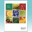 Capabilities brochure for a produce company.